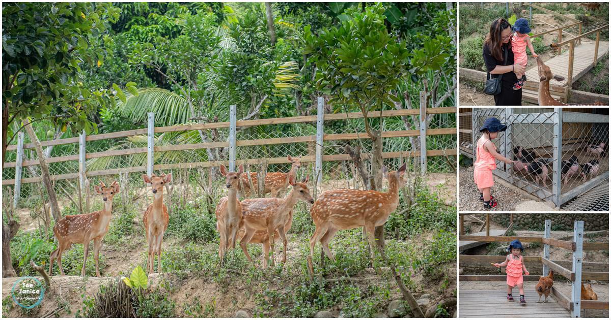 花鹿秘境 李家摸蜆農場 大溪景點 大溪旅遊 大溪親子景點 餵鹿 餵動物 桃園農場